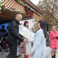 День села в Степанцях 337