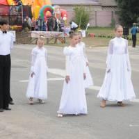День села в Степанцях 358