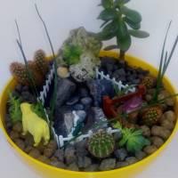 Конкурс міні-садів у Миролюбненській ЗОШ І-ІІІ ступенів