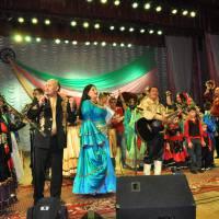 Виступ народного аматорського родинного ансамблю ромської пісні і танцю