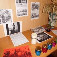Тематична виставка(Карасин)