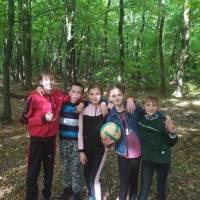 ліс3 (1)