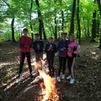 ліс3 (2)