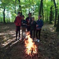 ліс5 (1)