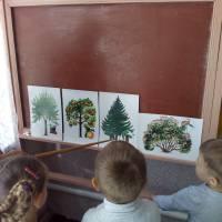Заклад дошкільної освіти