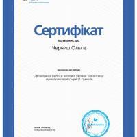 MCFR_Черниш_О_ОРШ