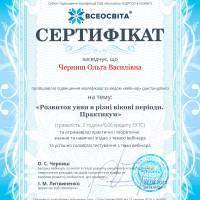MCFR_Черниш_О_РУ