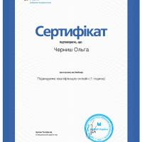 MCFR_Черниш_О_ПК