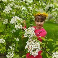 Цвітуть сади. К.Попівка.Любарська Вікторія.