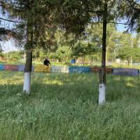 Упорядкування території Степанівського СБК