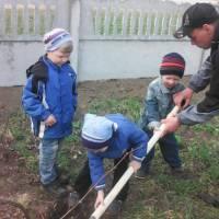 Садимо дерева. Вересоцький ЗДО «Пролісок»