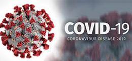 covid19.gov.ua